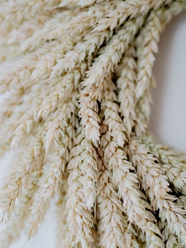 Close up of Wheat dried wreath by Flourish and Grace on a white wall